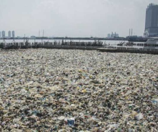 Sampah Teluk Jakarta