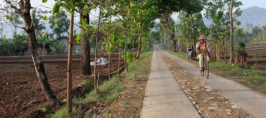 Bantuan Langsung Tunai Desa (BLT Desa)